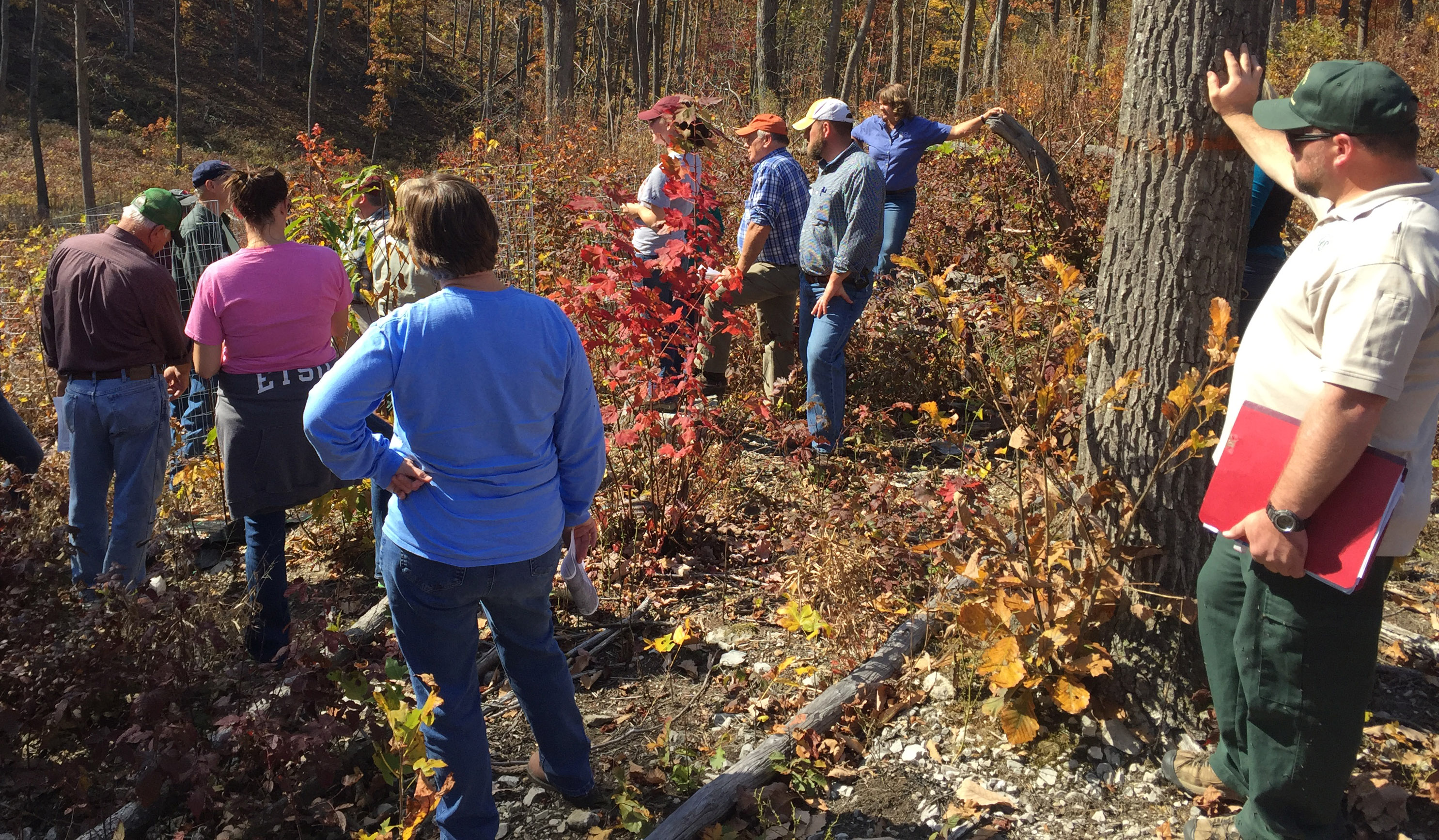 The Fall Forestry & Wildlife Field Tours give participants a close up look at sustainable woodland and wildlife management practices.