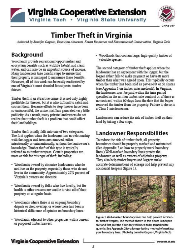 Timber Theft Publication