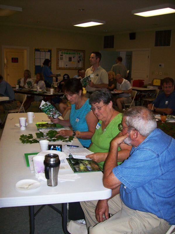 Participants use a key to identify plants.